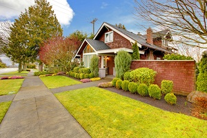 Roof-Cleaning-Lakewood-Wa
