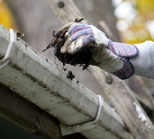 Roof-Cleaning-Services-Gig-Harbor-WA