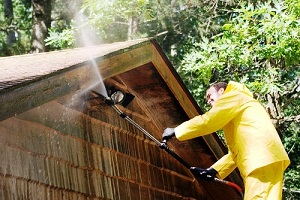 Roof-Cleaning-Spanaway-wa